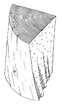 Spiral of Grain